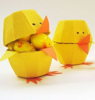 egg box chicks