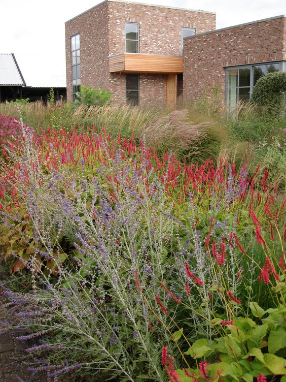 Nl hummelo garden piet oudolf gardens pinterest for Planting the natural garden piet oudolf