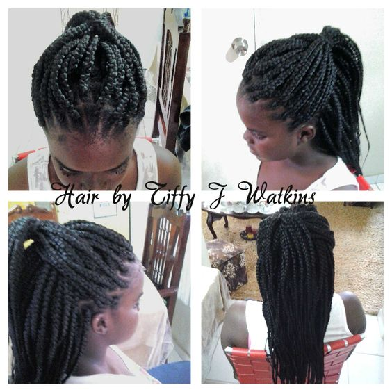 Crochet Box Braids Pinterest : ... ? Pinterest Protective styles, Crochet braids and Purple braids