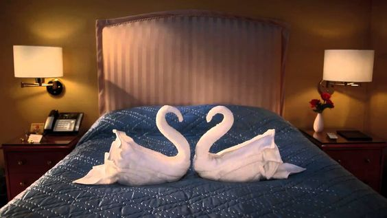 Swan Song - CitizenM Hotels TV Commercial Ad