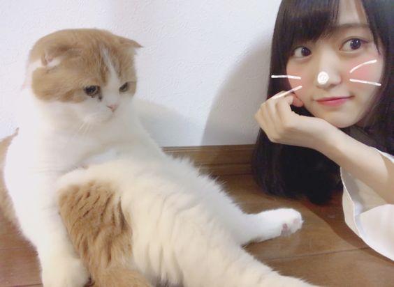 トム君と菅井友香