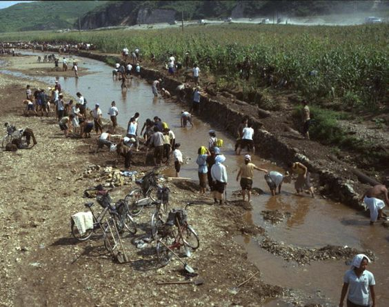 North Koreans try to rebuild the banks of a washed out riverbed near their corn fields which were damaged by July flooding, in Songchon County, North Korea.