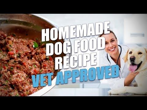 173 Homemade Dog Food Recipe Vet Approved Limited Ingredient