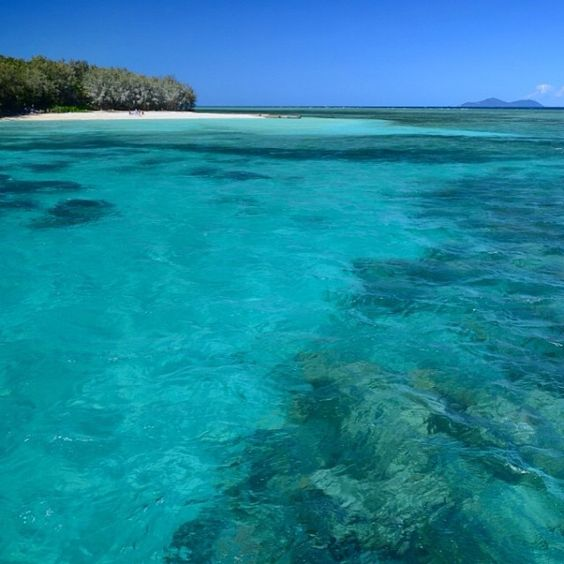 The greatest underwater adventure you'll ever find. This is Green Island on the Great Barrier Reef, Queensland, Australia. Diving or snorkeling - the fish you'll meet here are from another world!    Photo from rucksack_se on Instagram.  #australia #queensland #greatbarrierreef #cairns #paradise #turquoise #beach #greenisland