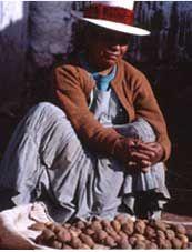 Papas a la Huancaina: #potatorecipe, Art & Culture of the Andes - About PC