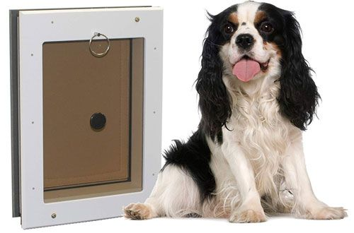 Freedom Extreme Weather Dog Door In Wall With Insulated Flap Dog Door Extreme Weather Dogs