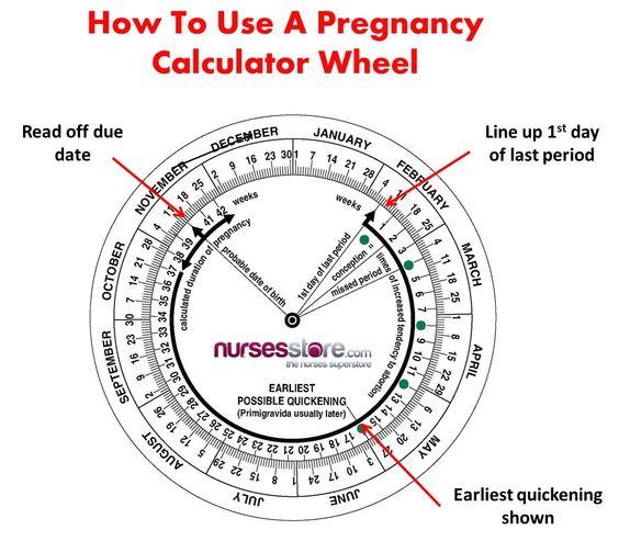 How To Use A Pregnancy Calculator Wheel - Nurses Store