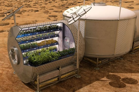 Les premiers légumes cultivés dans l'espace