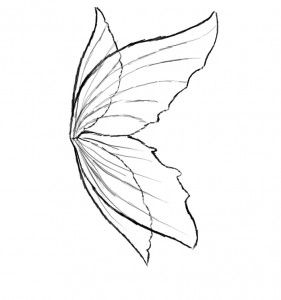 Fairy Wings To Color Fairy Wings Coloring Page Ready Printed Pic 14 Fairy Wings Drawing Fairy Drawings Wings Drawing