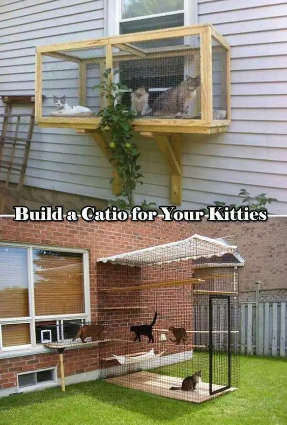 Hack Build A Catio Cats Diy Projects Outdoor Cat Enclosure Cat Patio