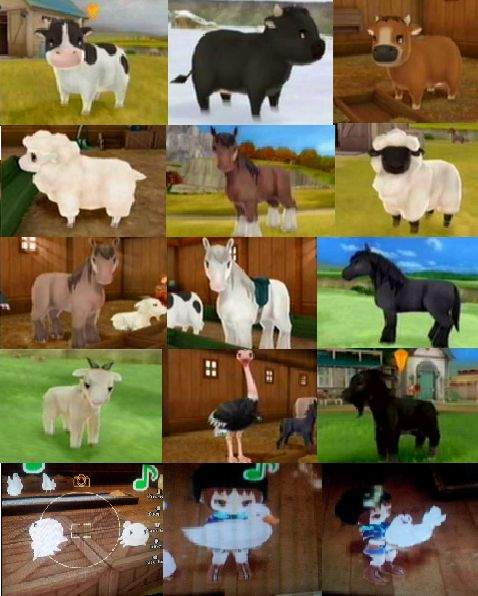 All of the livestock and poultry (: From HM: Animal Parade ...