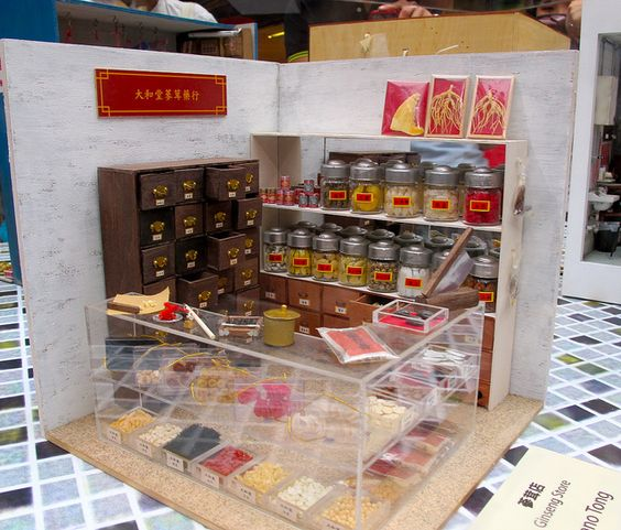 miniature Chinese herbal store - just like Dr Wong's in the 1970s