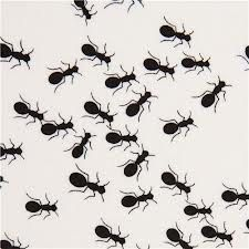 Ants Black and White Timeless Treasures Fabric 1 yard