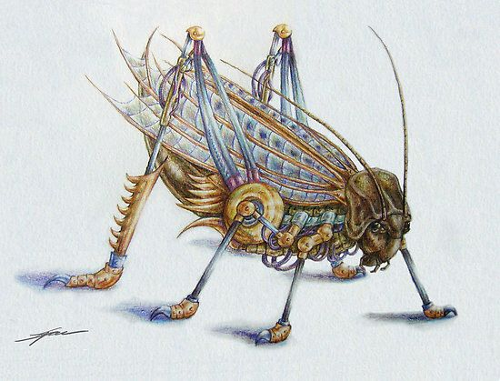 Haakapainizi- Native American myth: a giant grasshopper creature that snatches children in a big basket to devour them.