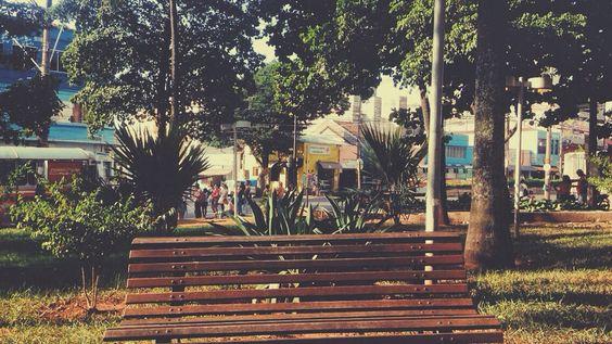 Bauru, Câmara Municipal