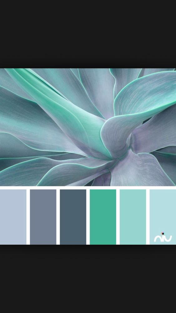 Wall Colour Inspiration: Muted Greens Colour Inspiration