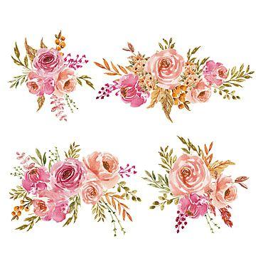 مجموعة من الزهور المائية الخوخ الوردي والترتيب أو باقة ل الورد المرسومة معزول نمط Png والمتجهات للتحميل مجانا Flores Em Aquarela Ilustracao Rosa Ilustracao De Flor