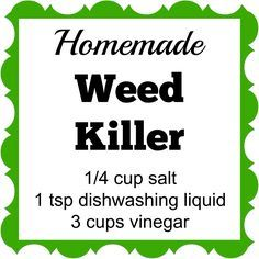 This Homemade Weed Killer has only 3 ingredients. Spray it on the weeds and…