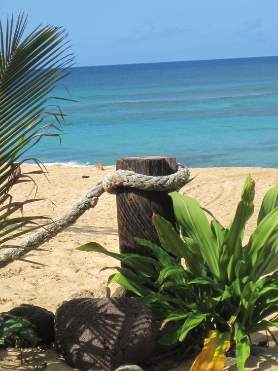 Sunset Beach - Oahu