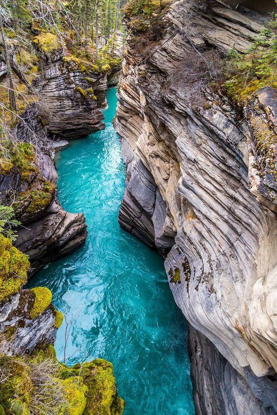 Johnston Canyon in Banff National Park / Canada (by Irving Espinosa). -