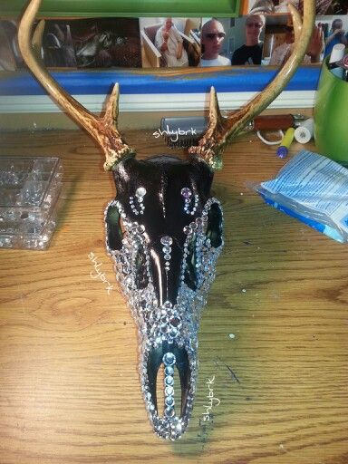 My Finished Deer Skull Project Spray Painted Black I