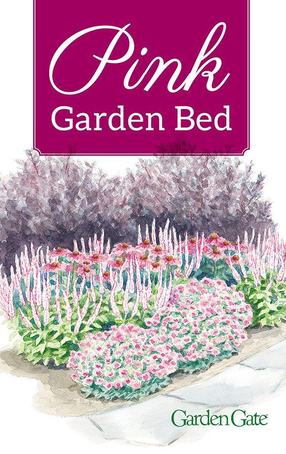 Long Blooming Pink Flower Combo Garden Planning Pink Flowers