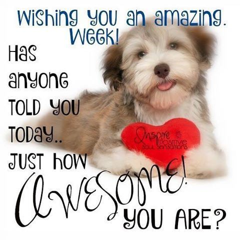 Wishng you an amazing week!  Has anyone told you today... just how Awsome you are?