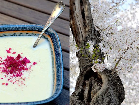 A rose and almond milk creme de pot from India and the 100th anniversary of the Cherry Blossoms in Washington DC