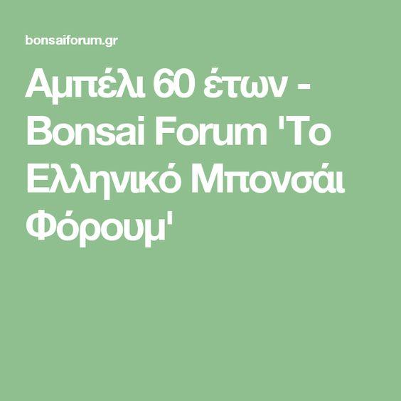Αμπέλι 60 έτων - Bonsai Forum 'Το Ελληνικό Μπονσάι Φόρουμ'