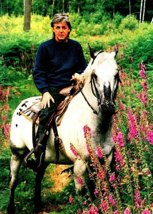 Sir Paul McCartney shows off his skills in the saddle #equestrian