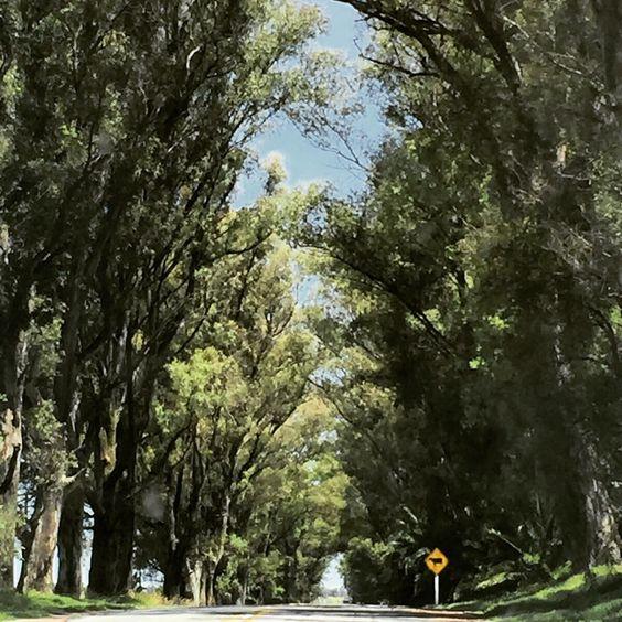 Ruta hacia Uruguay