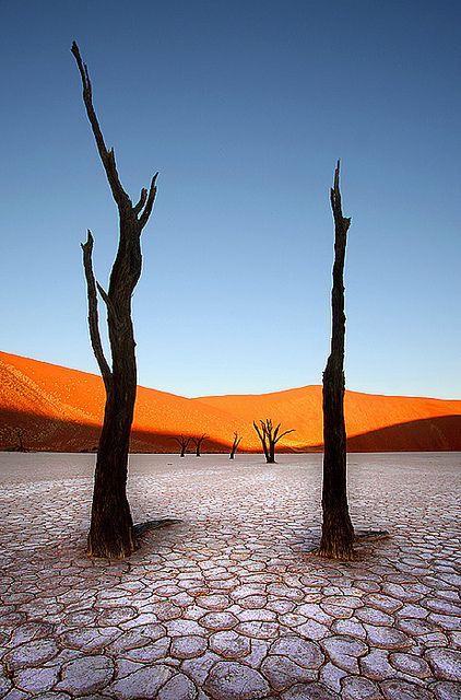 """Namib-Desert. Eine herrliche Wüste, die du in der Breite durchwandern kannst. Siehe: """"Wüsten - Leben in der Todeszone""""."""
