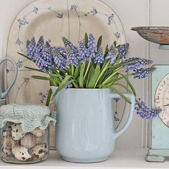 Blå perleblomster...favoritten på denne årstiden #springishere #easter #vårlig #vibekedesignblogspot#muscari