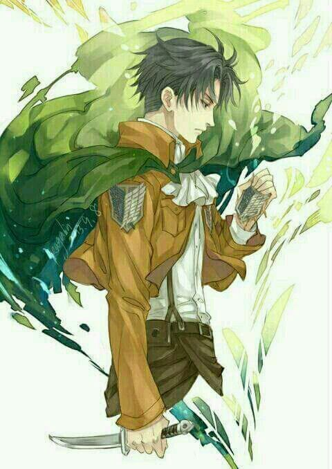 صور نادرة ليفاي من هجوم العمالقة امبراطورية الأنمي Amino Attack On Titan Anime Attack On Titan Levi Attack On Titan