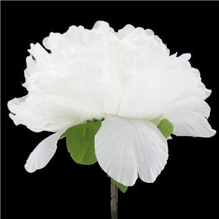 White peony with bud 1 99 hobby lobby 50 off sale 3 2 14 advice