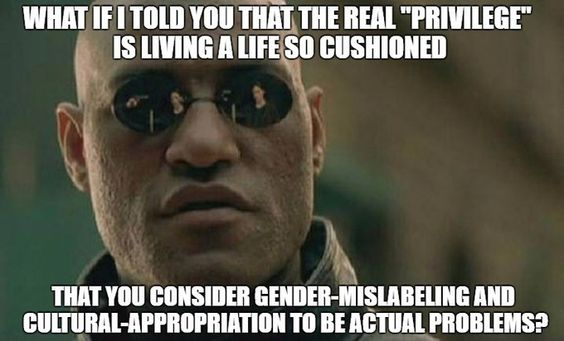 What actual privilege looks like (resubmitted)