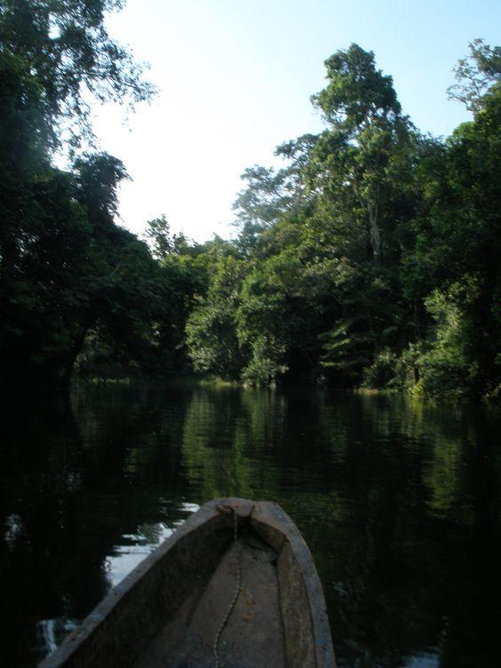 Beatiful sight at Bayano Lake, must visit it if you can, Panama... More info at: http://www.panoramio.com/photo/33093092
