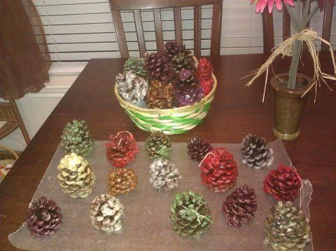 Reuse old Scentsy Wax on Pinecones! cute Idea. This also make great fire starters for wood burning fire places! =)
