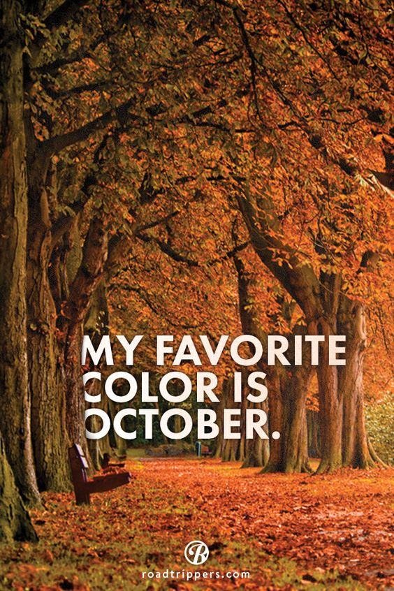 My favorite color is October :)                                                                                                                                                                                 More