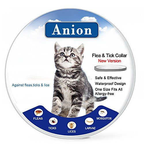 Flea Tick Collar For Dogs And Cats Grey Repel Prevent Fleas Pests Insectswater Resistant8 Month Protectionone Size Fits Allnew Version Cat House Cats Dog Cat