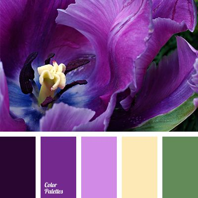 It is a striking colour solution! Intruding of olive green into the family of shades of violet: from aubergine to lilac, makes it a bit bold. The only warm.