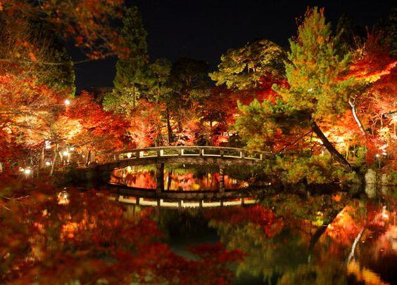 Eikan-do Temple of the maple ( Kyoto ,Japan ) Author: Hitomi Zama.