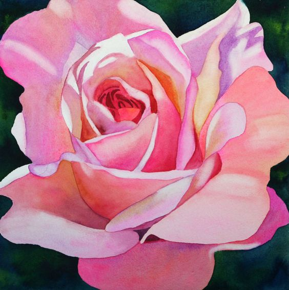 Anne Abgott (b.1938) —  Pink Rose  (700x703)