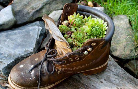 É comum encontrar em alguns jardins calçados velhos ou usados, sendo utilizados como recipientes para o cultivo de plantas e flores. Es...