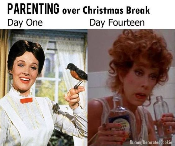 20 Hilarious Holiday Mom Memes