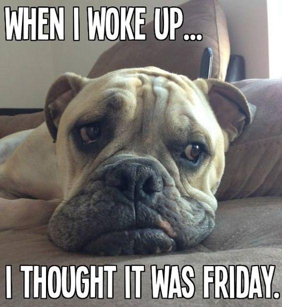 Bummer!  It's only Thursday...: