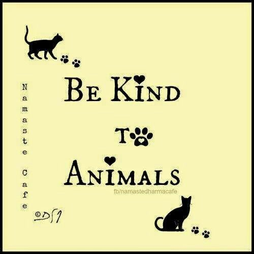♥  BE KIND TO ANIMALS: