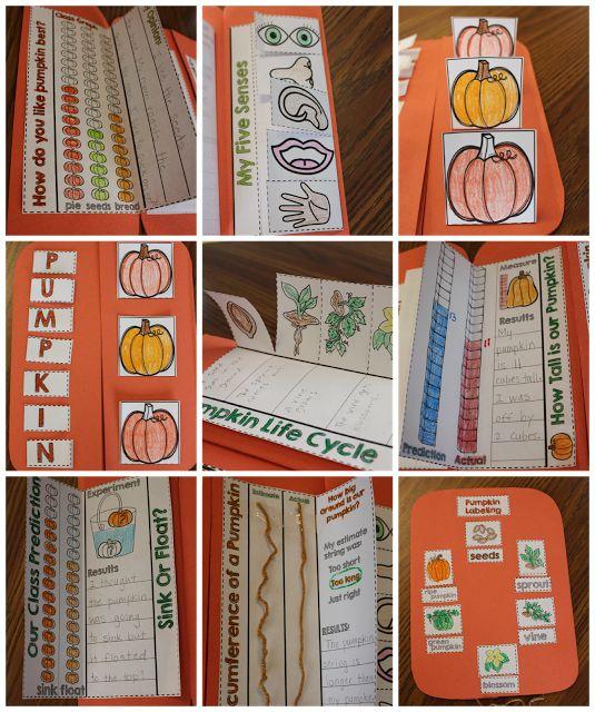 pumpkin science, pumpkin math, pumpkin lesson ideas, pumpkin activities, freebie