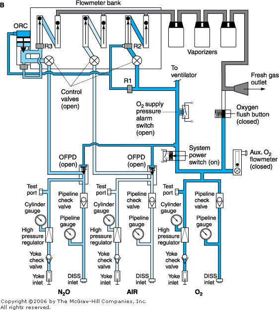 c0af90b3af6e8d701353be2f3c5ff06d vet med veterinary medicine simplified internal schematic of an anesthesia machine b  at crackthecode.co