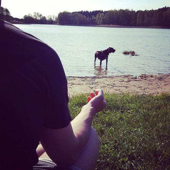 #ivystyle  #ivy #ivydog #dog #przyjaciel #pies #gato #piesokot #koty #popołudnie #medytacja  #joga #yoga #jezioro #chill #friend #friends #ivydres